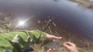 Ловля густеры  на течении , видео rybachil.ru