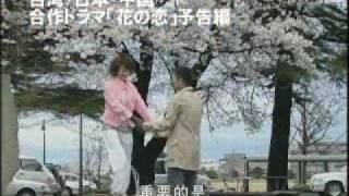 台湾の『花の恋』のプロデューサー張玲惠さんから(いつもスカイプで)...