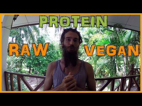 WHAT ABOUT PROTEIN ON A FRUIT BASED RAW VEGAN DIET?
