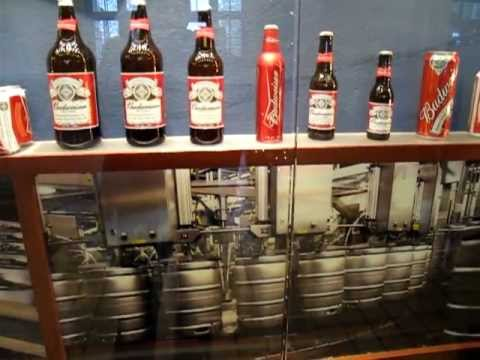 Budweiser Beer Different Kinds of Packaging, Anheuser-Busch Brewery Tour, St Louis MO