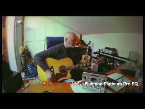 Fishman Platinum Pro EQ - Chicco Gussoni