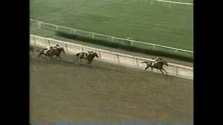 Caveat - 1983 Belmont Stakes
