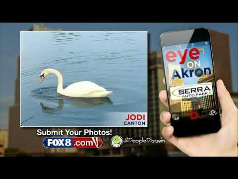 Repeat Fox 8 News at 4pm | Natalie Herbick