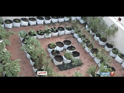 Want to be an expert in Terrace Gardening? | Poovali | News7 Tamil