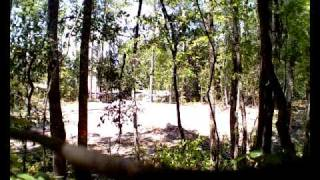 front end loader clearing trees DPS_0829.mov
