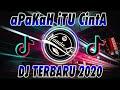 DJ APAKAH ITU CINTA  Ipank  TERBARU 2020 🎶 DJ TIKTOK TERBARU 2020