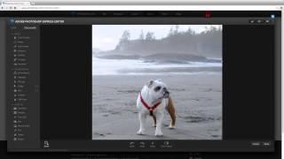 Как сделать изображение черно-белым онлайн