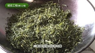The process of making Sencha✿JAPANESE HOME COOKING✪How to Japan TV