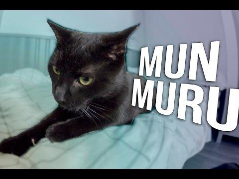 MUN MURU!