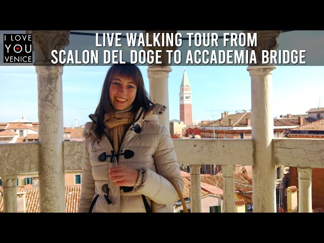 Live Walking Tour from Scalon del Doge to Accademia Bridge, exploring the Fish Market in Venice IT