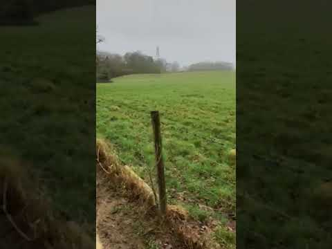 Muddy walk from Hoathly Hill