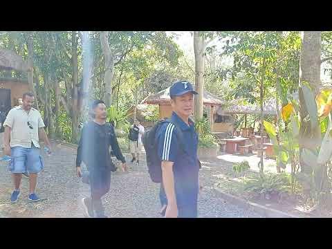 uluwatu-temple-feat-kecak-dance-with-coffee-luwak-plantations-bali