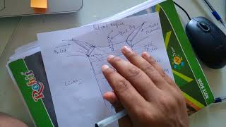 Petrol Engine working!(Diagrams and technical explanation)