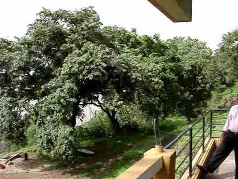 Goa beach property for sale ground floor view 106.wmv