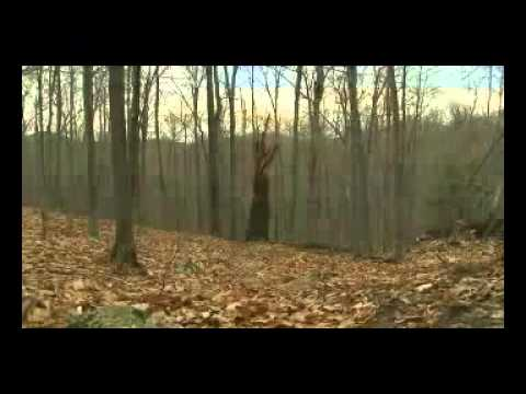MonsterQuest  Folge Bigfoot in New York Dokumentation Serie Teil 3