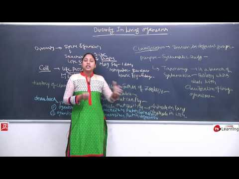 Diversity In Living Organisms: - What is Diversity? - 01 For Class 9th & NTSE