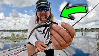 HOW do PRO ANGLERS Fish a Swim Jig?!?