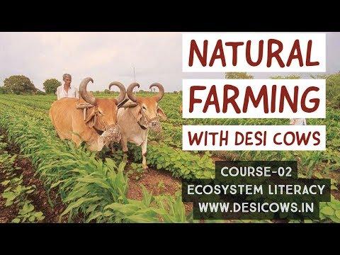 Natural Farming with Desi Cows Course-02