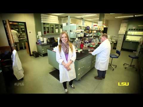What can the LSU College of Science offer you?