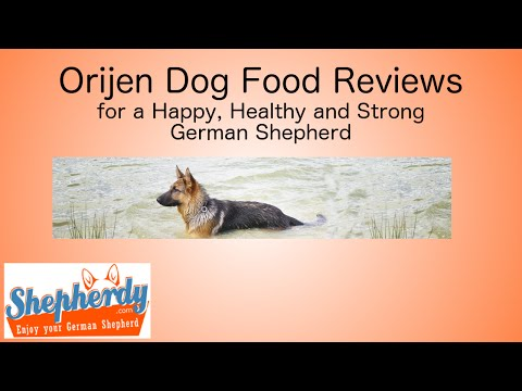 Orijen dog food reviews for a Happy, Healthy and Strong German Shepherd