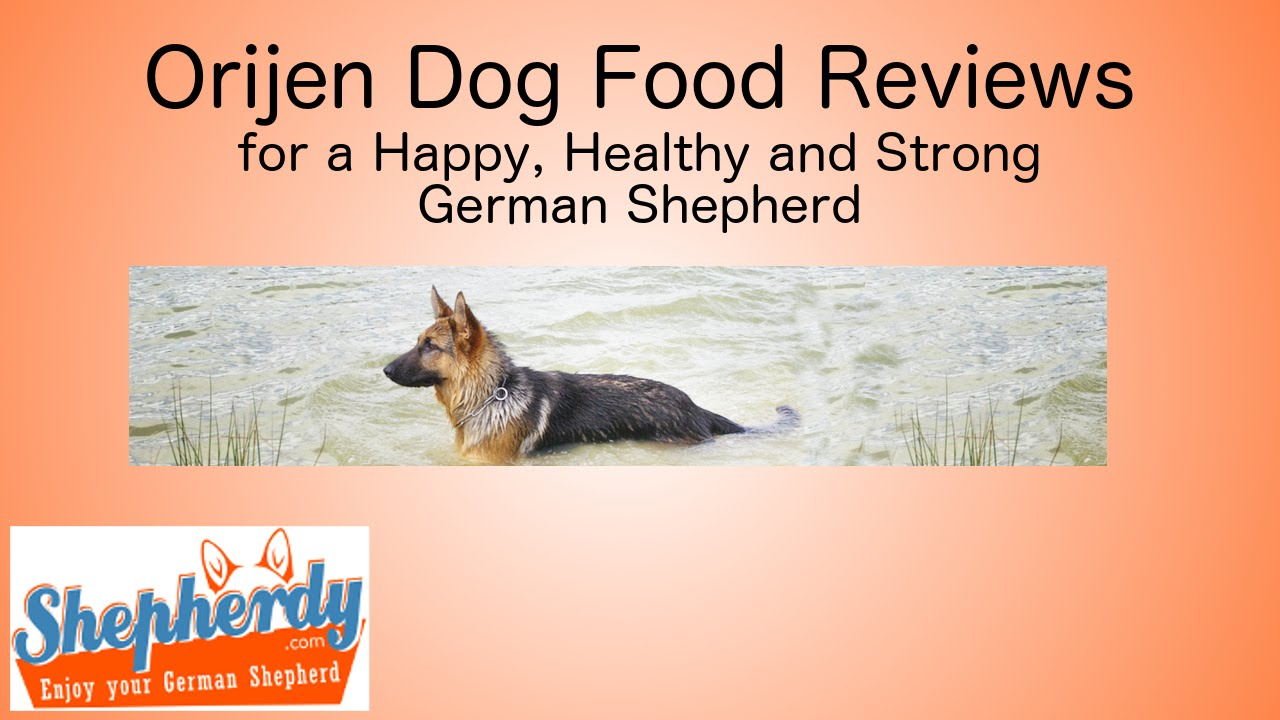 Orijen Dog Food German Shepherd