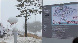 [우리집티비]강원도가볼만한곳/홍천가볼만한곳/눈썰매장추천…