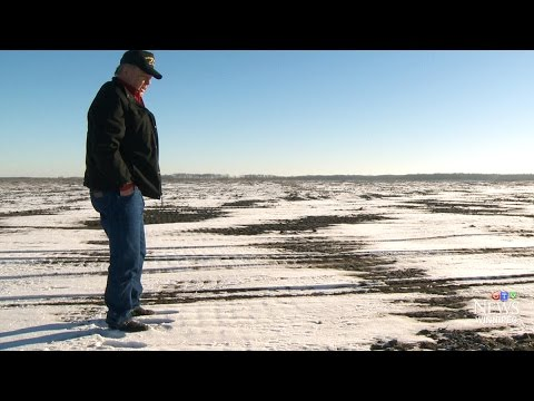 Manitoba farmer suing to stop land from becoming dumping ground