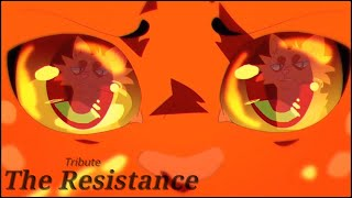 Warrior Cats Tribute - The Resistance