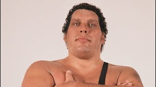 Unknown Surprising Facts About Andre The Giant || Pastimers