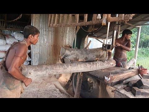 Margosa Wood Cutting at Road Side Saw Mill Asia।Skilled Labor Cutting Margosa Wood at New Saw Mill