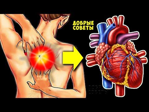 Тревожные Признаки того, что ваше Сердце НЕ в порядке! Как предупредить болезни сердца