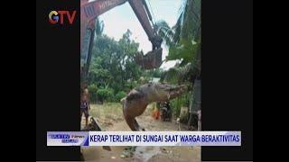HEBOH! Warga Bangka Tengah Tangkap Buaya Raksasa dari Sungai - BIM 29/10