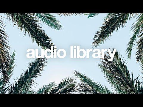 Paddles — Vlad Gluschenko [Vlog No Copyright Music]