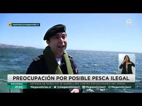 Chile en alerta por flotas de China cerca del mar nacional