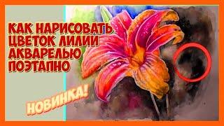 Как нарисовать цветок лилии акварелью поэтапно/ Полный видеоурок