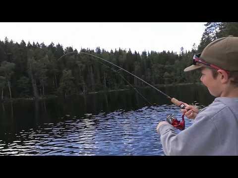 Dalsland Fishing - Jan Mueller fighting rainbow trout!