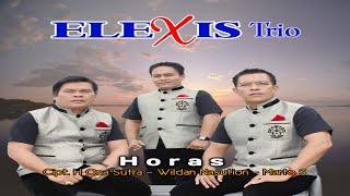 Trio Elexis - Horas