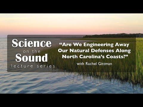 """Are We Engineering Away Our Natural Defenses Along North Carolina's Coast?"""