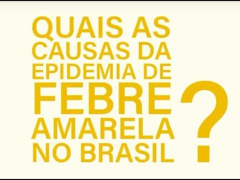 Quais são as causas da epidemia de febre amarela no Brasil?