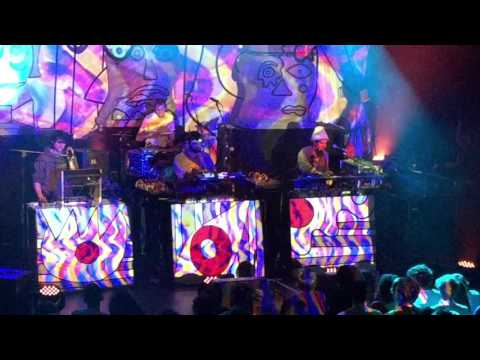 Animal Collective Lying in the Grass Live NYC Irving Plaza 2-24-16