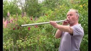 Wie wir mit einem Blasrohr mit selbstgebauten Darts (Pfeilen) auf eine Zielscheibe schiessen