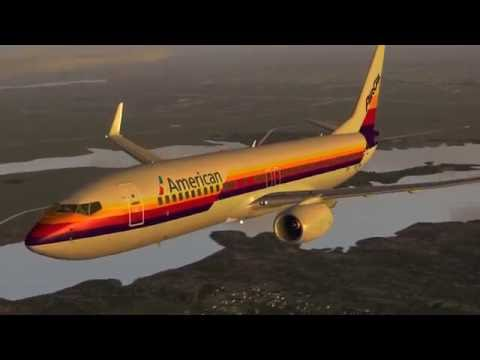 American Airlines 737 Heritage Liveries Tribute
