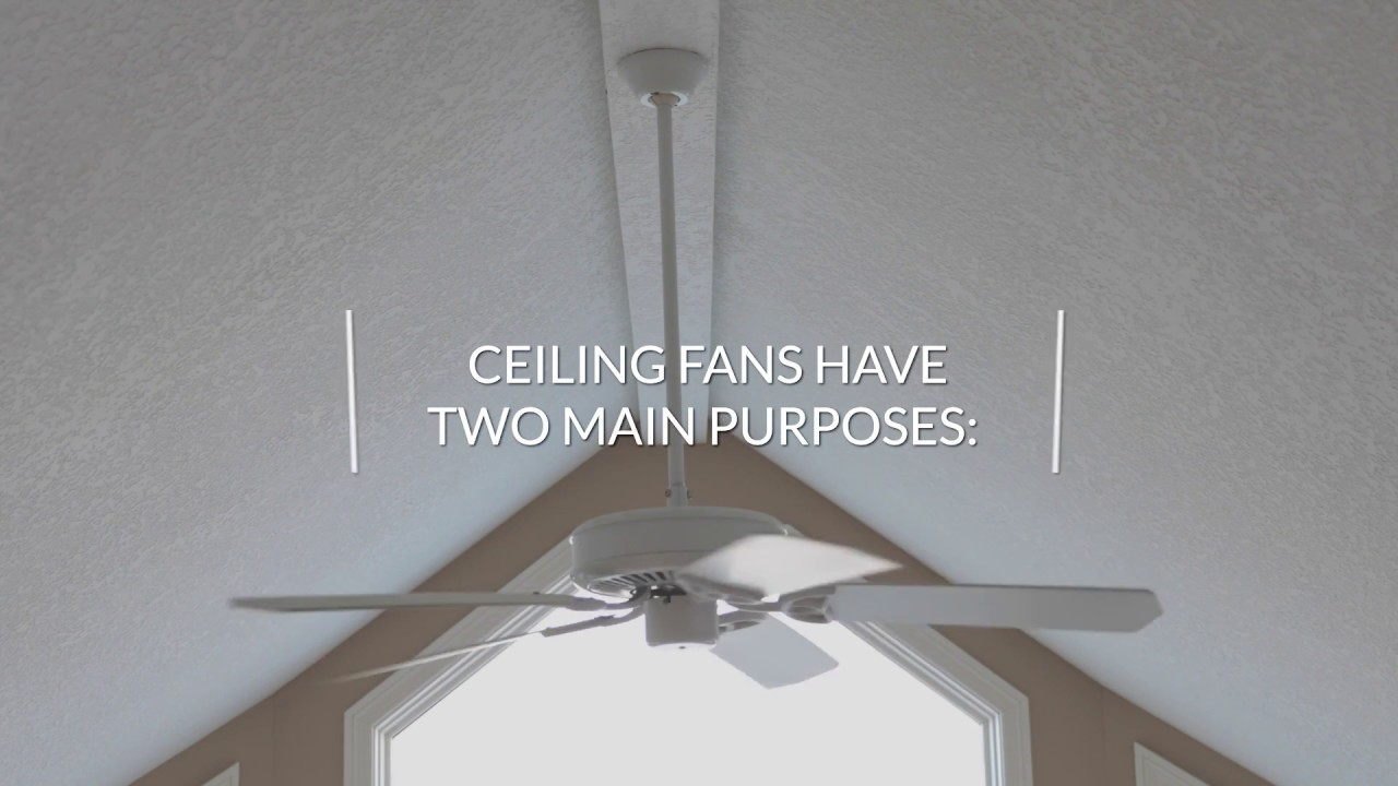 Ceiling Fans - Browse Our Selection Of Decorative Fans! | M&M Lighting