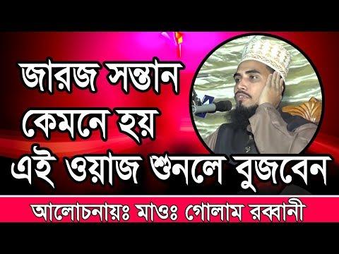 Golam Rabbani Bangla Waz জারজ সন্তান কেমনে হয় ?