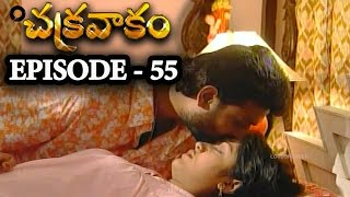 Episode 55 | Chakravakam Telugu Daily Serial