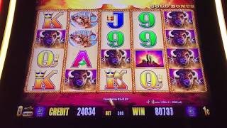 Buffalo Gold- Hand pay- 102 free spins!