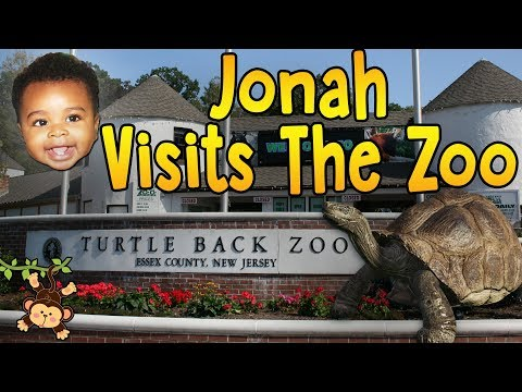 Turtle Back Zoo - Lions, Tigers, And Bears! Oh My! 🦁🐯🐻