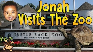 Lions, Tigers, And Bears! Oh My! Turtle Back Zoo - Jonah's Domain: Ep. 3