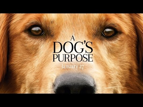 Thumbnail: A Dog's Purpose - Official Trailer (HD)