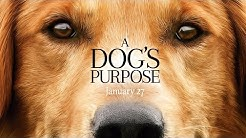 A Dog's Purpose - Official Trailer (HD)